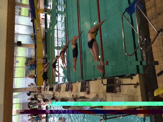 Shrewsbury Masters Swimming Gala Quarry Pool Shrewsbury The High Sheriff Of Shropshire